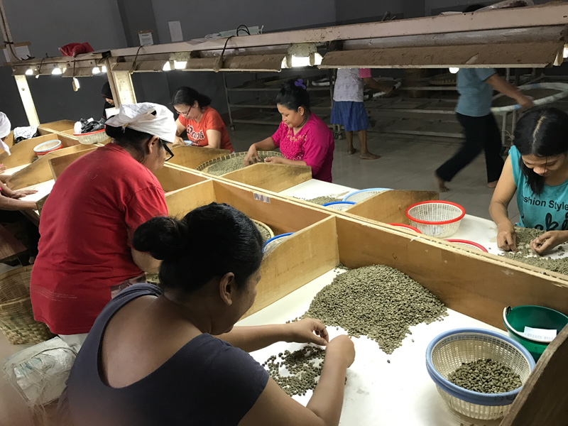 スマトラ コーヒー生産地